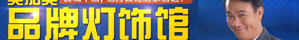 美加美灯饰加盟品牌灯饰加盟2015全国代理商火热招..